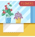 Beautiful house plants vector image vector image
