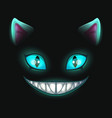 fantasy scary smiling cat face on black background vector image