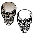 human skull isolated vector image vector image