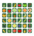 icons set of fruits and vegetables vector image vector image