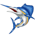 Blue marlin fish cartoon