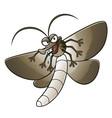cartoon moth vector image vector image
