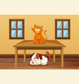cat and dog in the room vector image vector image