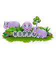 hippo are playing together in garden vector image