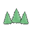 pine forest scene silhouette vector image