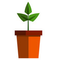 potted plant icon flat isolated vector image vector image
