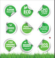 set organic fresh natural and tasty food labels vector image