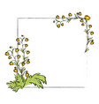frame with flowers vector image