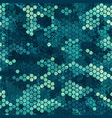 camouflage seamless pattern with blue hexagonal vector image vector image