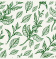 pattern nature leaves vector image