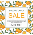 sale banner decorate with hand drawn oranges vector image vector image
