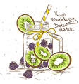 Sketch of Kiwi Blackberry detox water vector image vector image