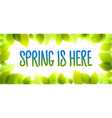 spring is here words hand written fresh green vector image vector image