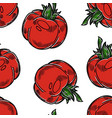 vegetable seamless pattern tomato farm harvest or vector image