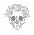 vintage hand drawn skull with roses vector image vector image