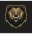 Angry Bear logo symbol vector image vector image