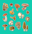hand drawn mushrooms stickers set vector image vector image