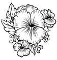 elegant decorative pansy flowers sketch pansies vector image vector image