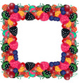 frame from the berries vector image