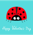 happy valentines day red lady bug ladybird icon vector image vector image