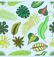 tropical leaves green exotic jungle palm vector image vector image