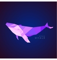 Whale Lowe roles polygons vector image vector image