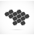 Honeycombs icon vector image