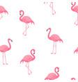 pink flamingos pattern vector image