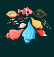 a fish and shells vector image vector image