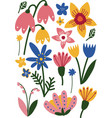 beautiful colorful wild and garden blooming vector image vector image