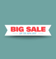 big sale ribbon banner vector image