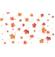 maple leaves background falling autumn leaves vector image