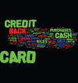 maximum return on your credit cards text vector image vector image