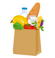 paper bag with groceries vector image