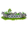 zebra playing in the garden vector image vector image
