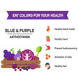eat colors for your health-blue amp purple vector image vector image
