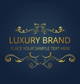 luxury brand modern gold logo template design vect vector image