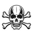 skull with crossbones detailed vector image vector image