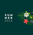 summer sale banner with palm frangipani flowers vector image