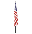 American flag on stand vector image vector image