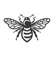 bee icon bug logo on white background vector image