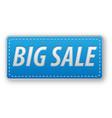 big sale button vector image vector image