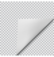 Curved corner of paper vector image vector image