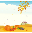 Fall crop vector image vector image