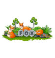 fox are playing in the garden vector image