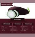 healthy collection eggplant vector image vector image