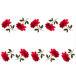 Holiday background with red beautiful roses vector image vector image