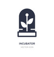 incubator icon on white background simple element vector image vector image