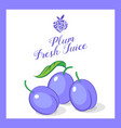 plum juice organic fruit sticker vector image