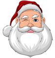 Santa Wink Face Front vector image